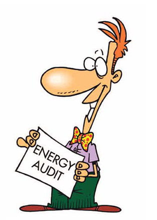 Energy Audits Business Customers
